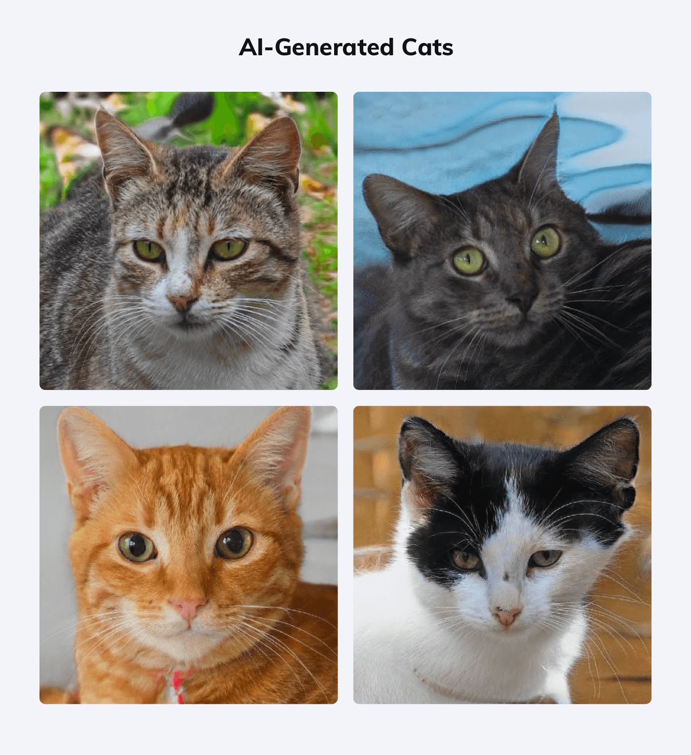 Some examples of AI-generated cats