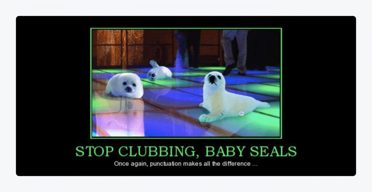 Gif with baby seals