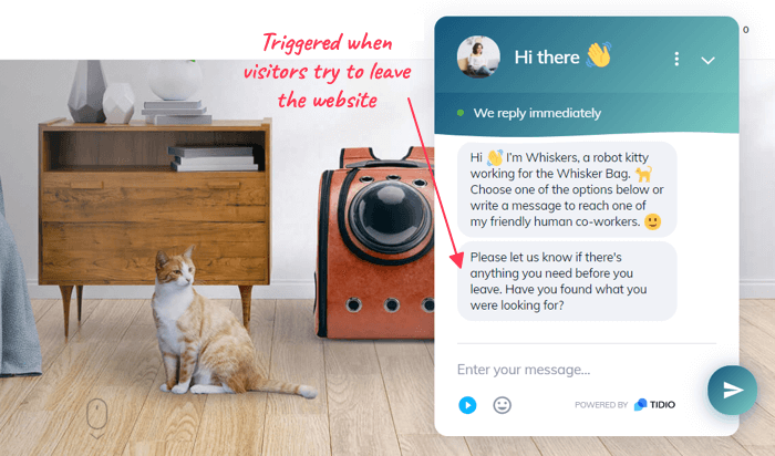 A message for customers looking for custom cat carriers