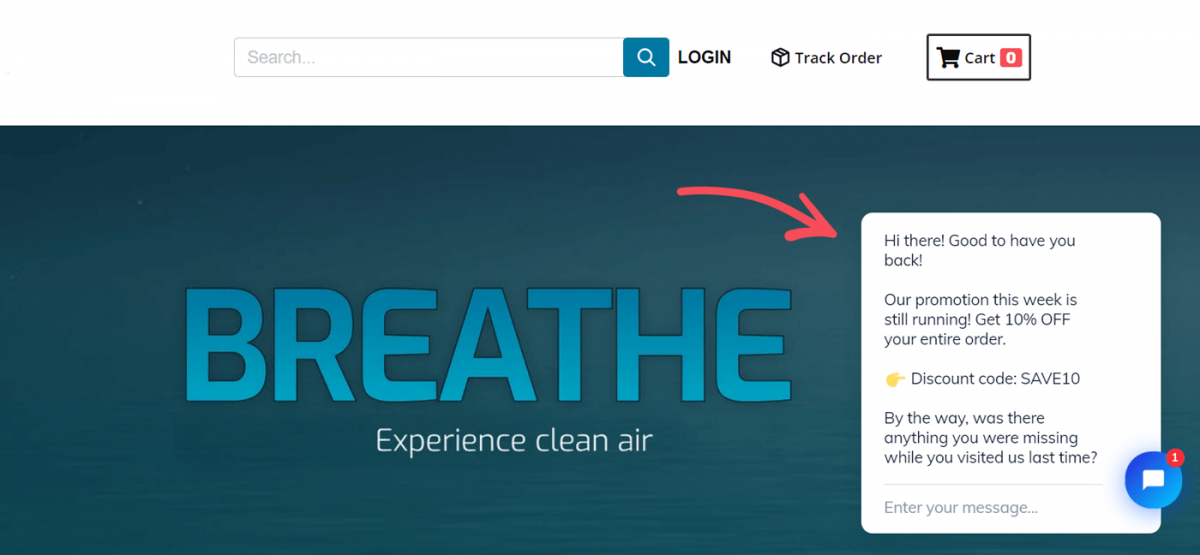 An online store with air purifiers
