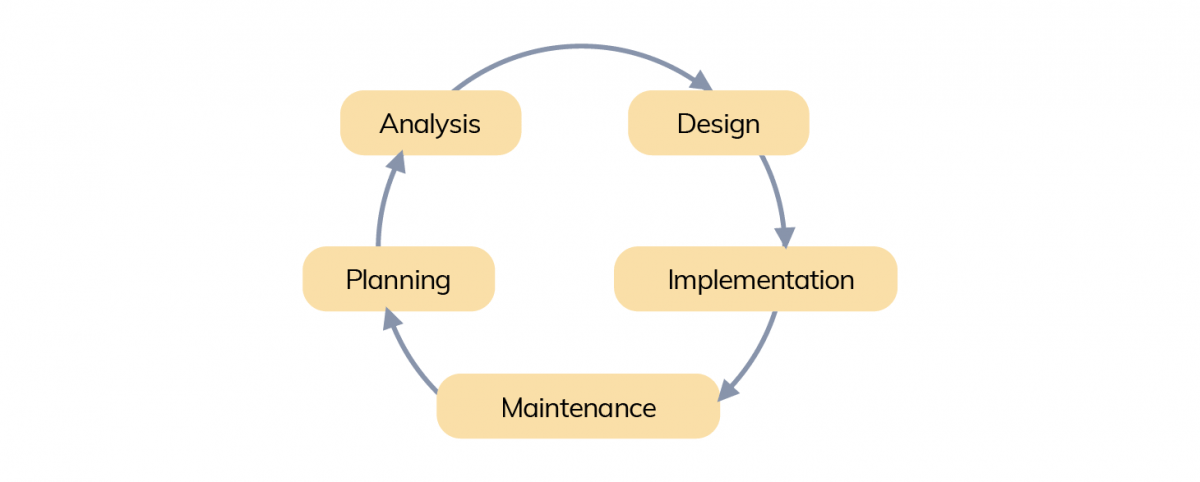 Development Life Cycle