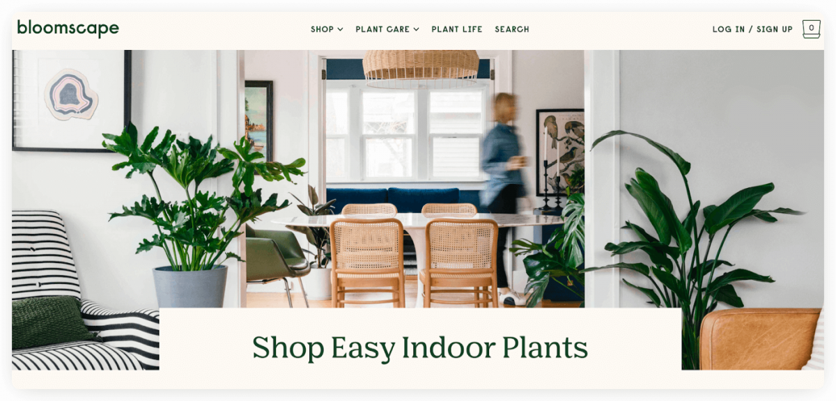Bloomscape homepage