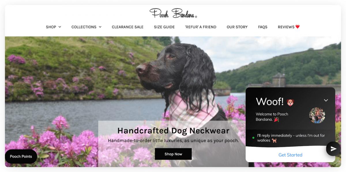Pooch Bandana homepage