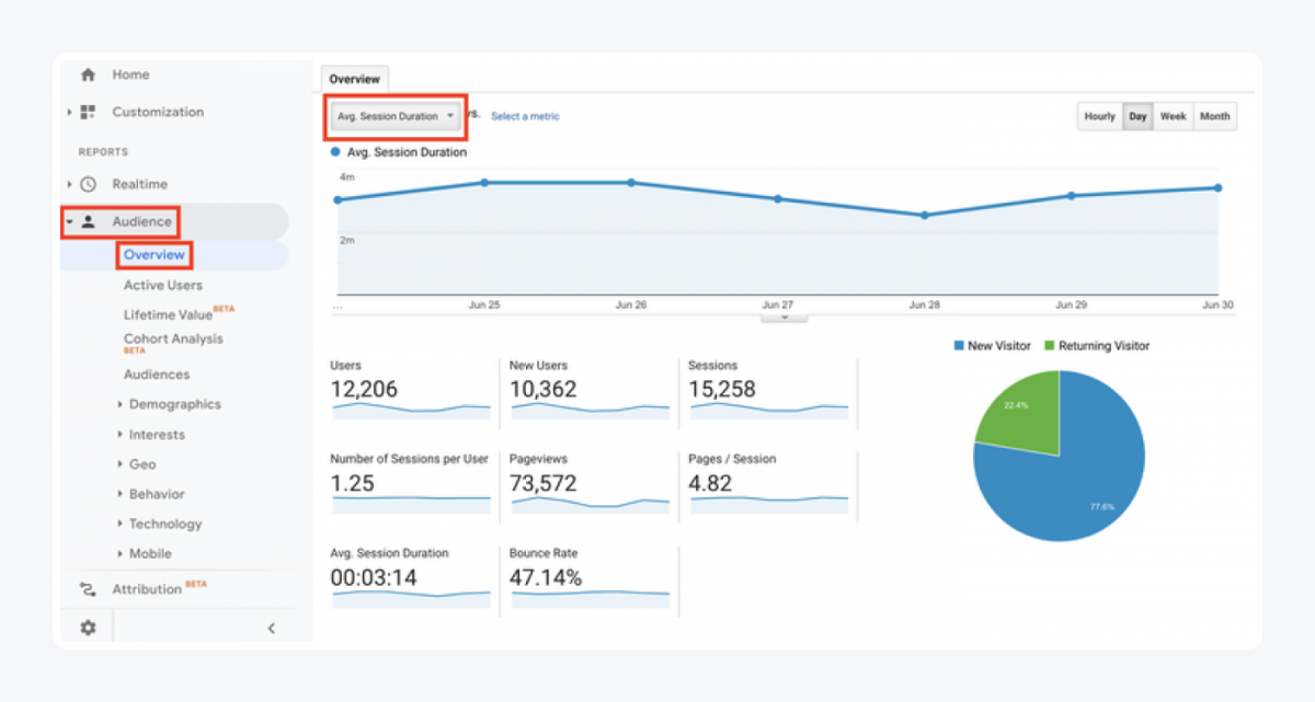 Google Analytics panel - Audience -> Overview