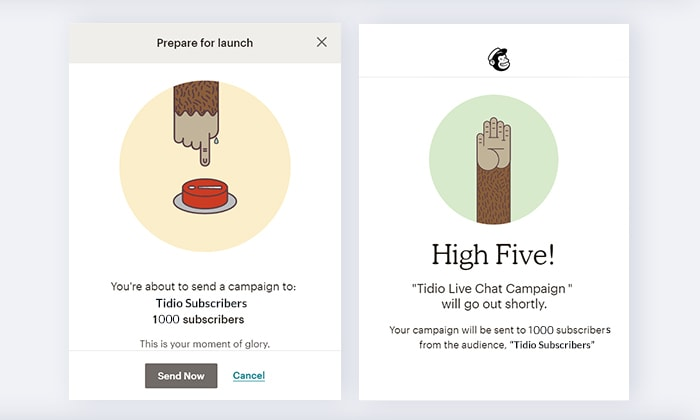 Mailchimp examples of microcopy