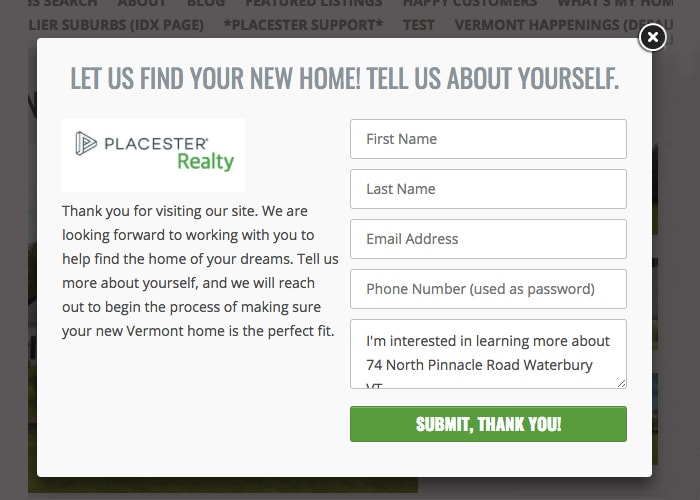 Example of opt-in form