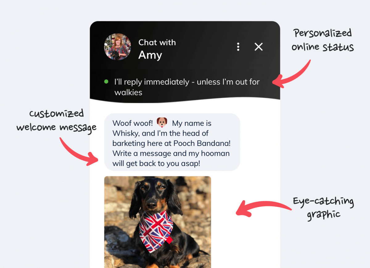 A live chat customer service message example