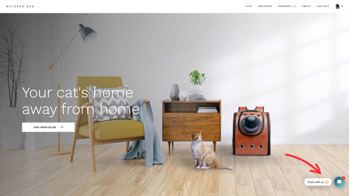 """""""How to travel with a cat: was a question that Whisker Bag founders asked themselves when launching a store. Their landing page communicates that backpacks are cats' home away from home."""