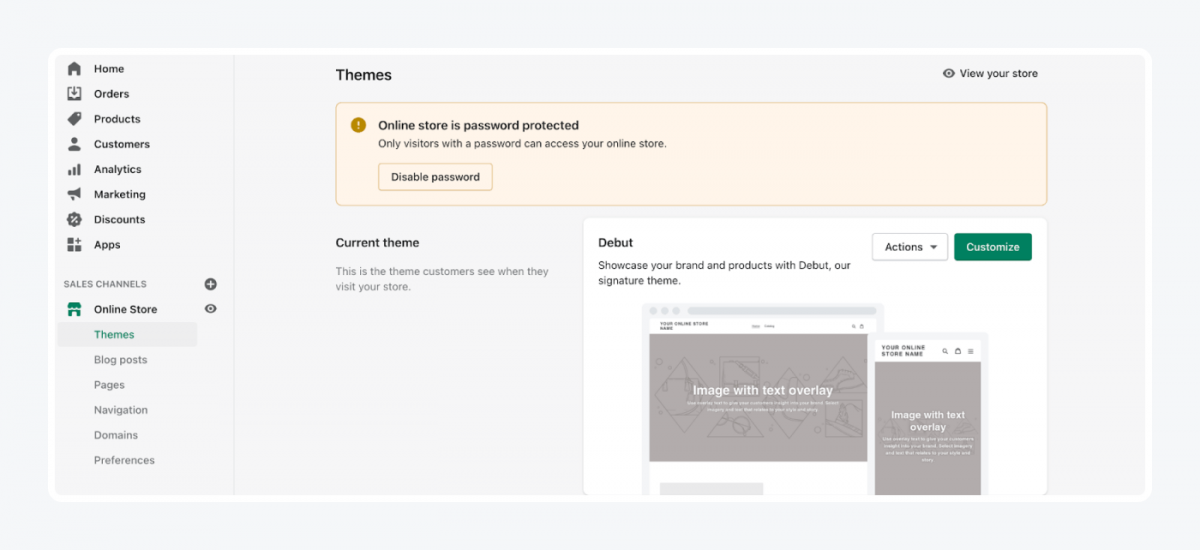Shopify's panel: themes tab