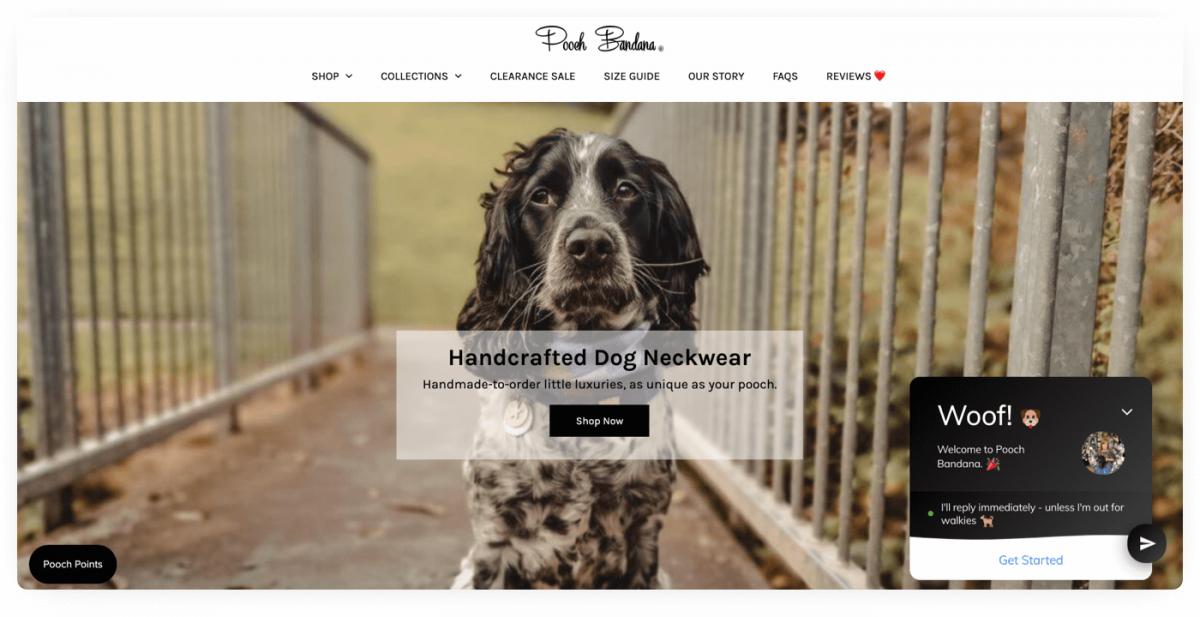 Online pet store example